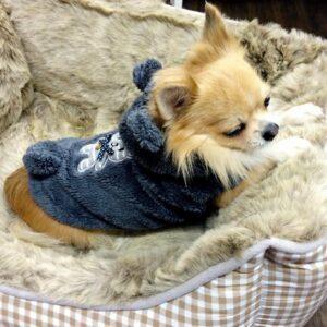 puppy angel teddy hoodie grau