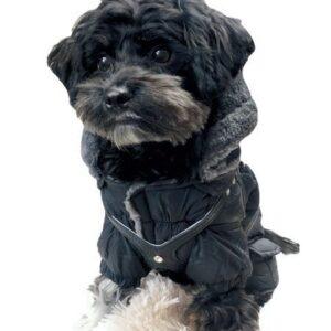 winter jumper black