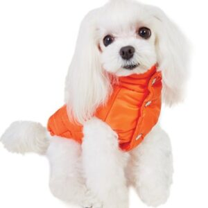 puppy angel love faux down vest orange