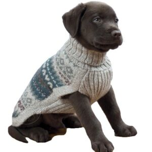 alpaca hundepullover light fall