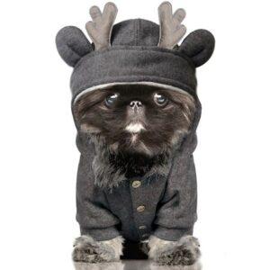 oh my deer hoodie