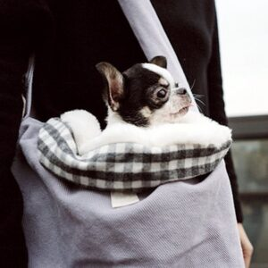louisdog sling bag