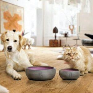 treusinn hundenapf keramik beere