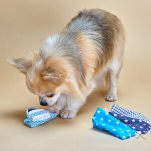 dummy xs für kleine hunde