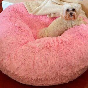donut hundebett dream on lollipop