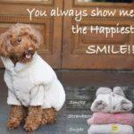 louisdog smile vest