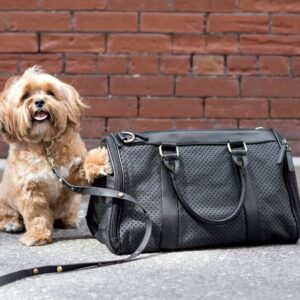 vegane hundetasche luxury black beauty