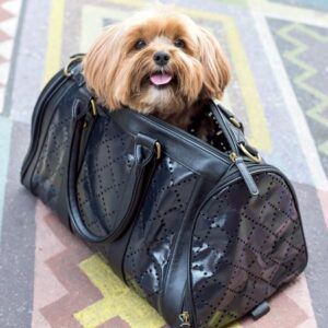 vegane hundetasche luxury midnight
