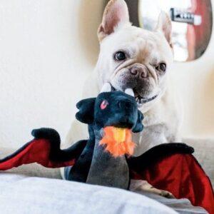 play hundespiel dragon