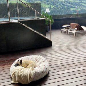donut hundebett outdoor anker rot