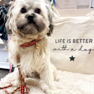 shopper life is better with a dog
