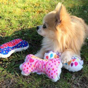 funny hundeknochen toys