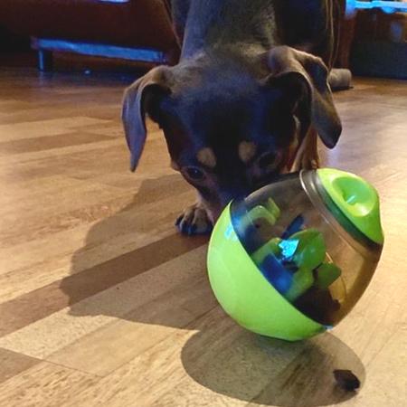 wooble fun ball